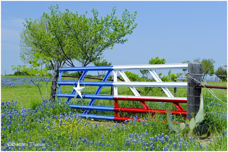 Texas gate landscape rural photos kodak moment