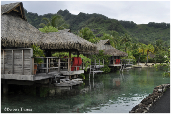 Over-the-Water Bungalows