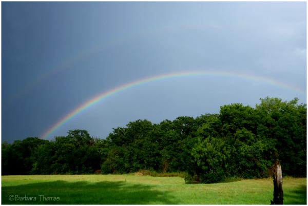 Rain in Texas