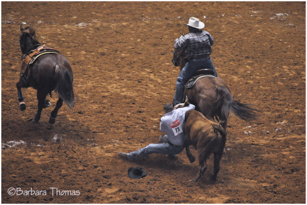 Rodeo - Bulldogging