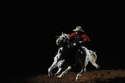 Rodeo - Shootout