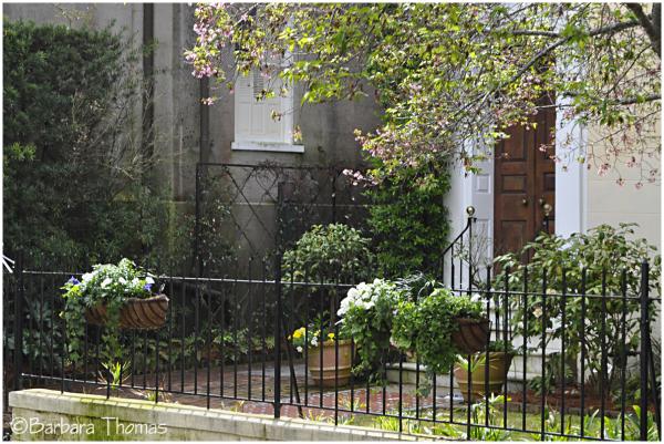 Doors of Charleston - 6