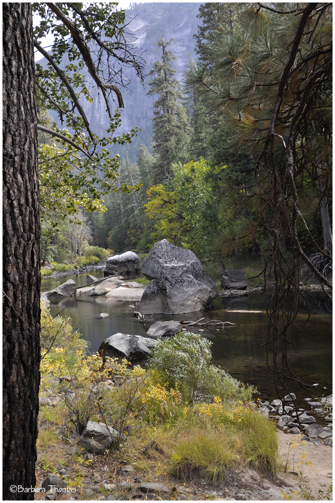 Autumn on the Merced River