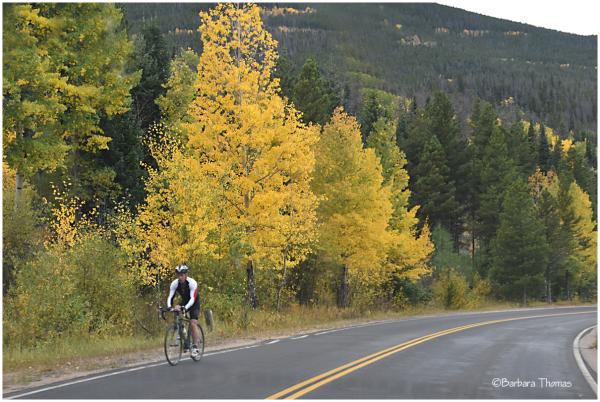 Biking In The Rockies