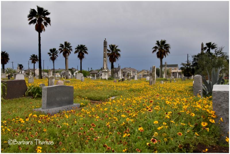 New City Cemetery