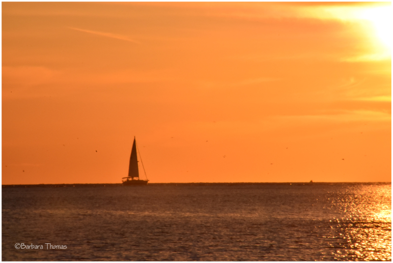 Red Sails In The Sunset