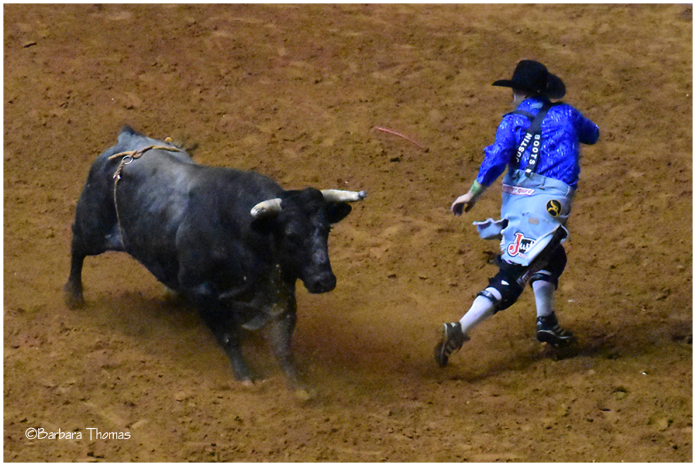 Rodeo Bullfighter