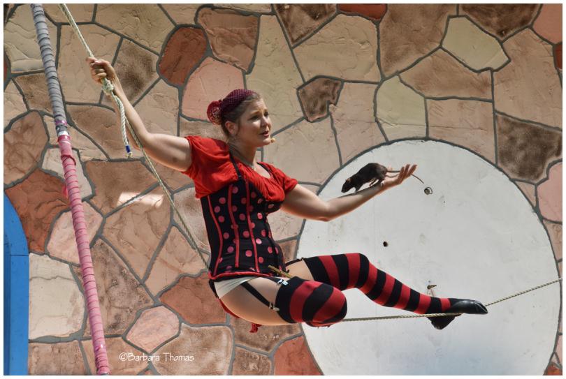 Cirque Du Sewer