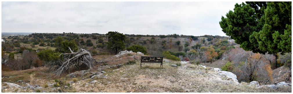 Texas Safari Ranch