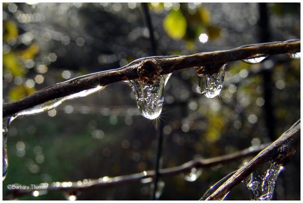 Cold Drops
