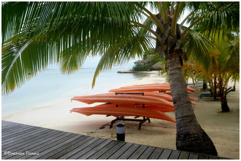Waiting Kayaks