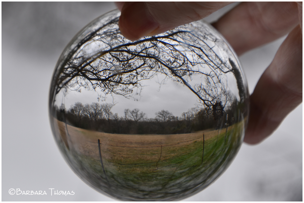 Lensball Photography