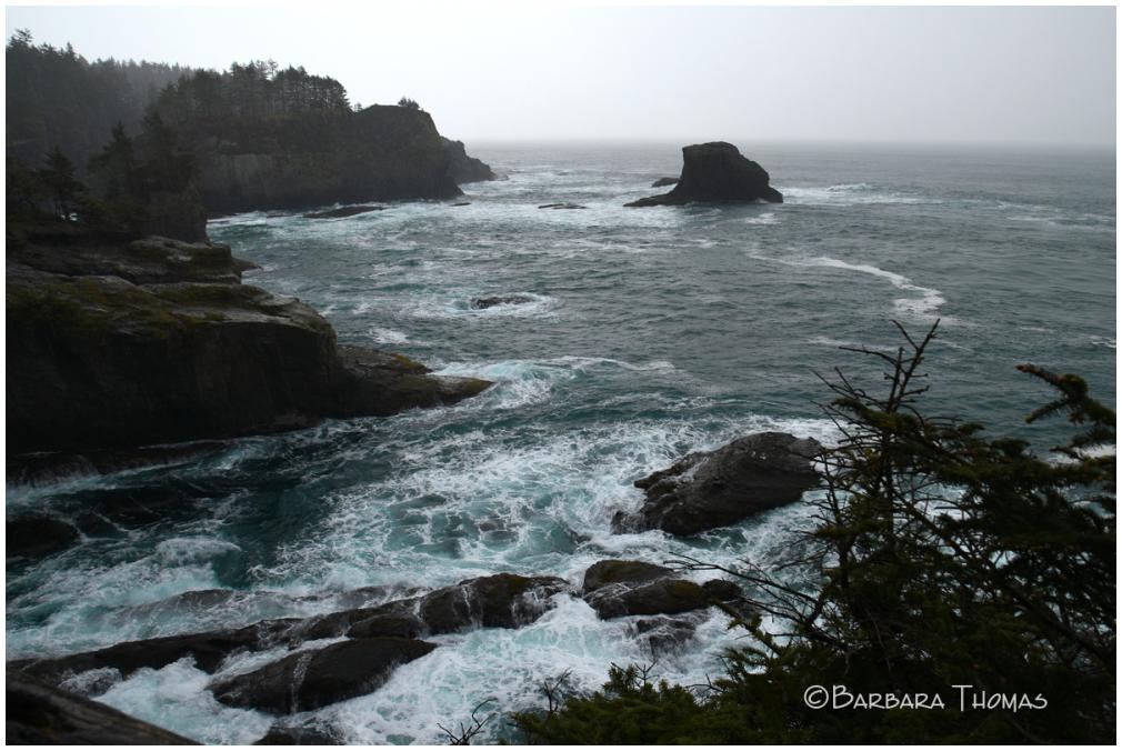 Cape Flattery In The Rain