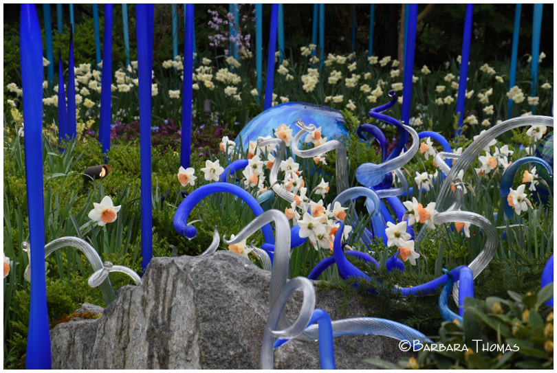 Glass And Daffodils