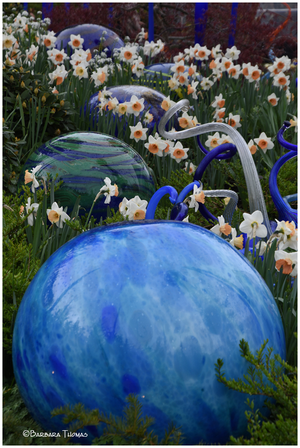 Dale Chihuly's Work