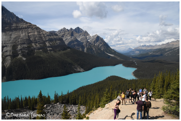 Peyto Lake Hike