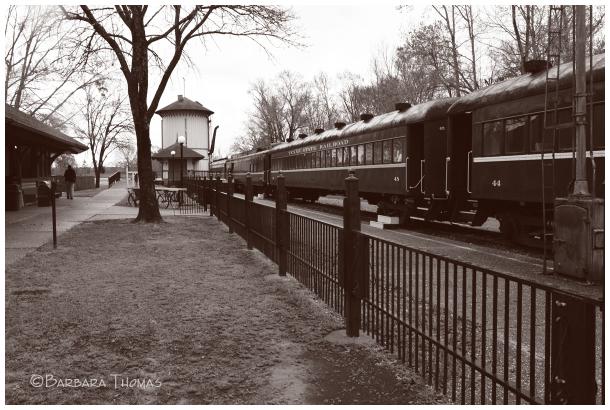 Texas State Railroad - 3