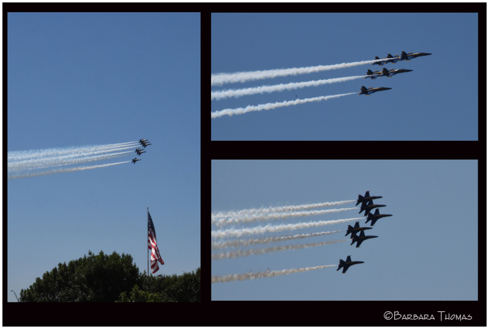 US Navy's Blue Angels