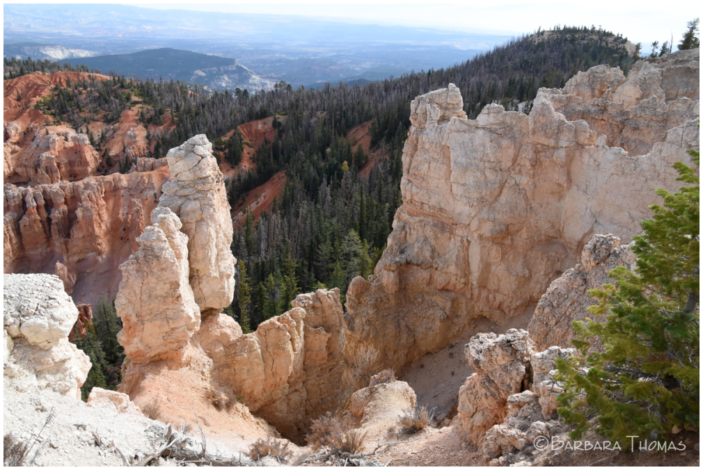 Return to Bryce Canyon