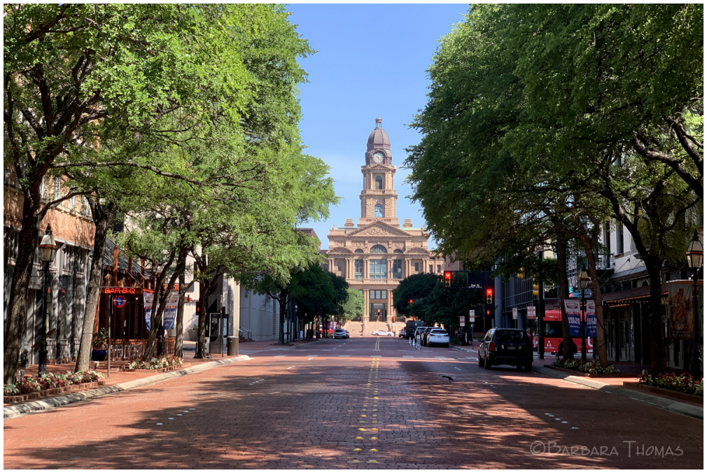 Summer Day In Ft. Worth