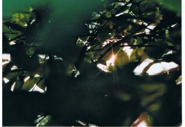 sun clip