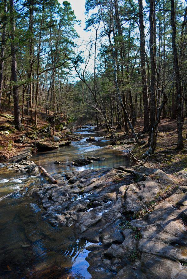 Stream Creek Stones Water Forest Beavers Bend