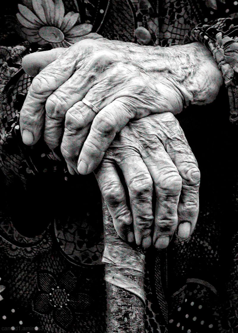 Withered (Hands of Time)