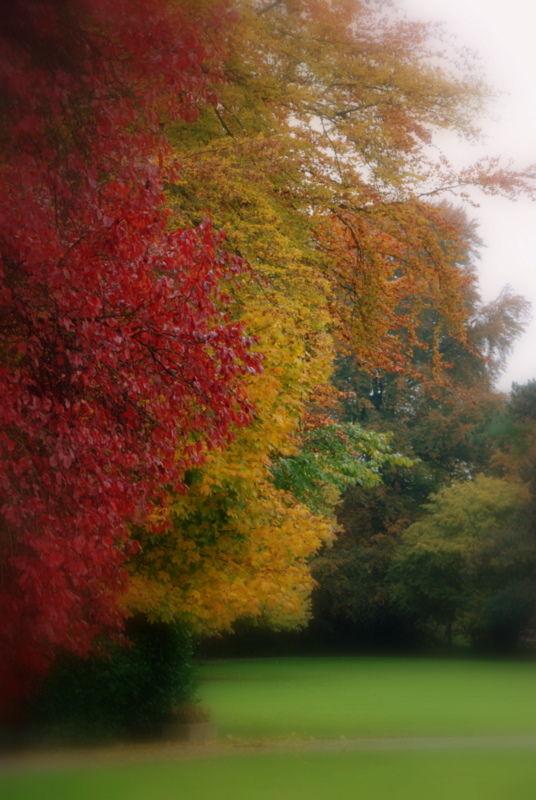 L'automne, printemps de l'hiver ...
