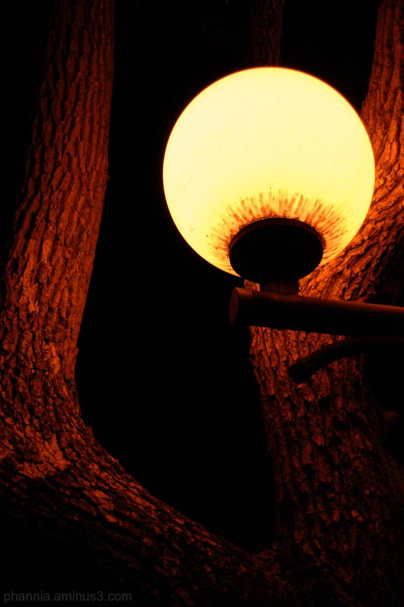 flare lamp