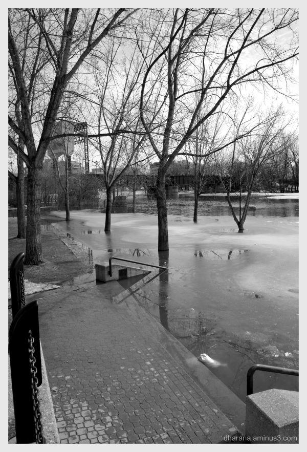 flooded forks 2