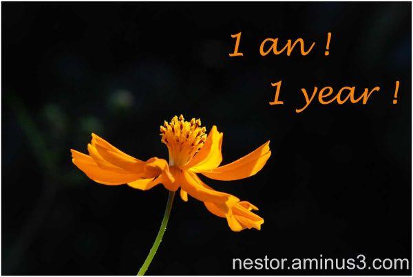 1 an ! 1 year !