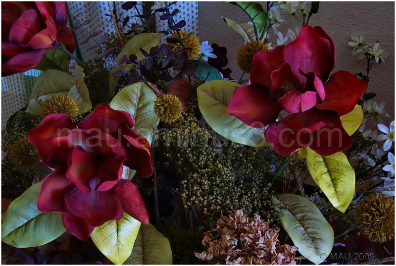 Flores del salón - Living room flowers