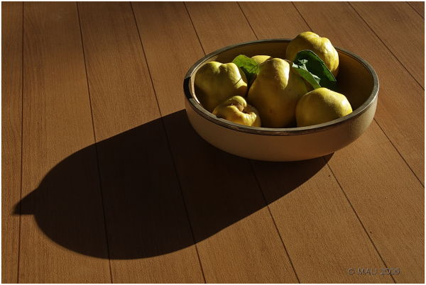 Bowl of quinces