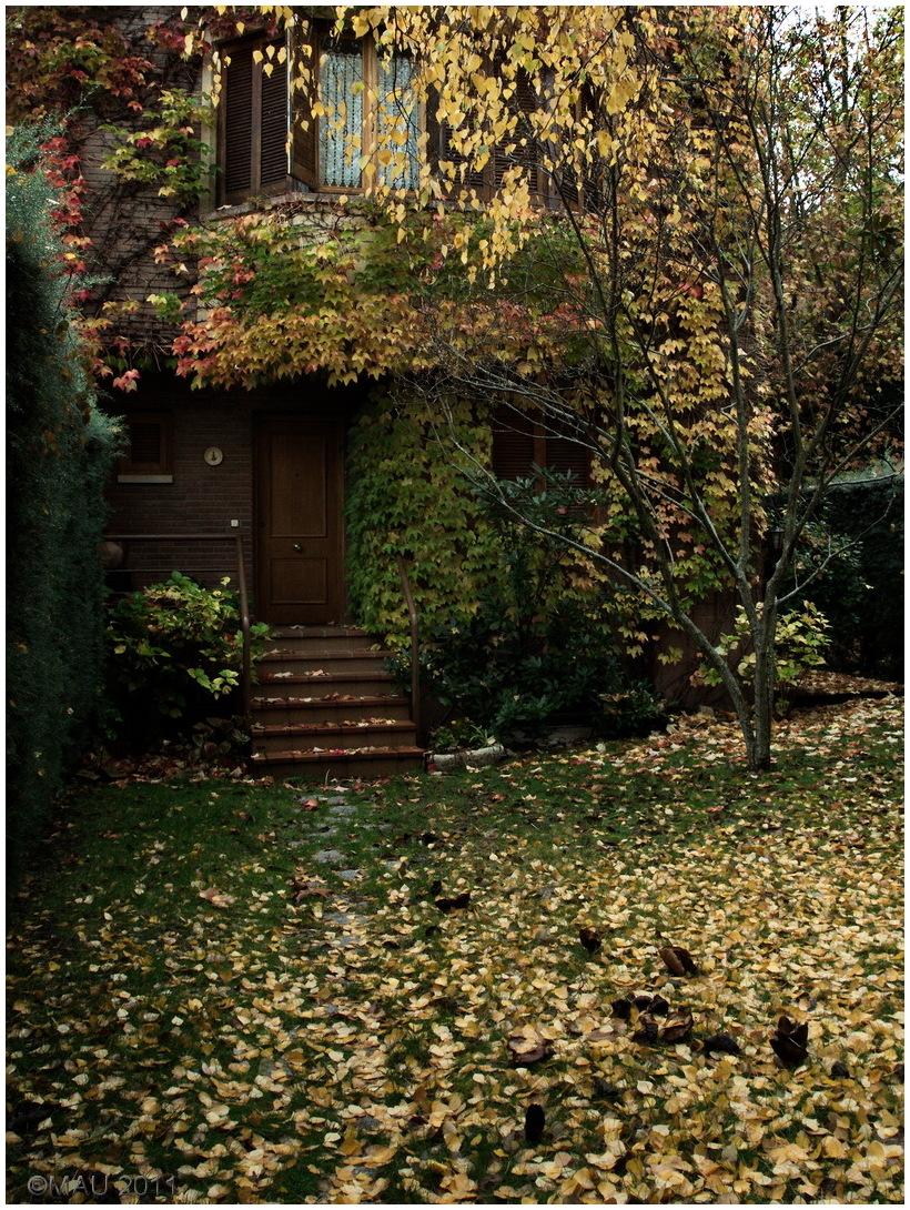 Autumn is leaving us