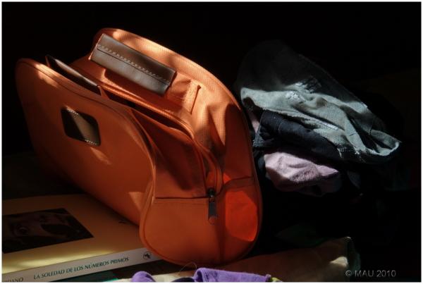 Preparando el equipaje   Getting ready to pack