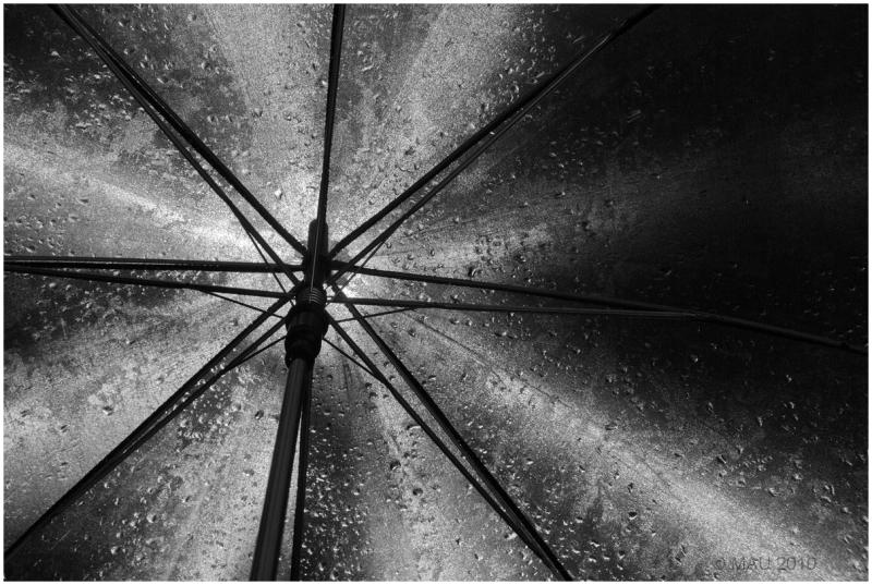 Mi paraguas negro - My black umbrella