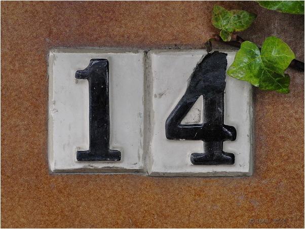 Número 14