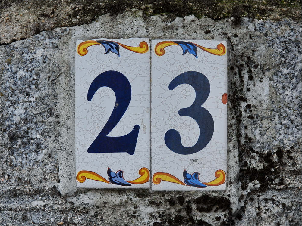 Número 23