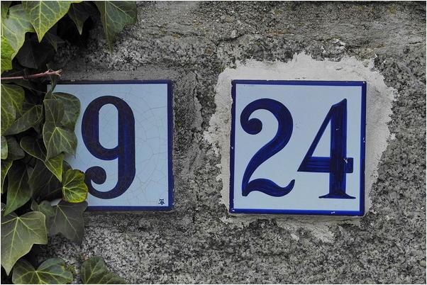 Número 24