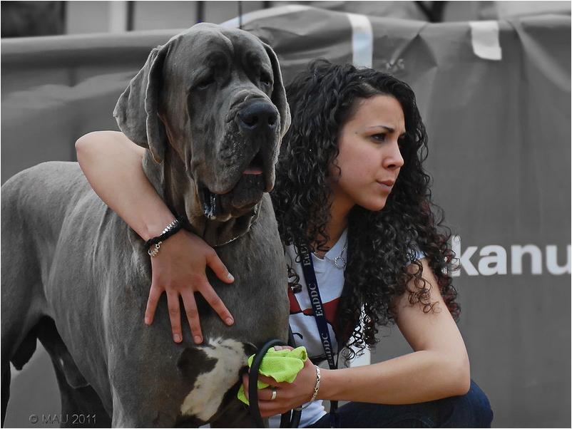 Un perro y su ama