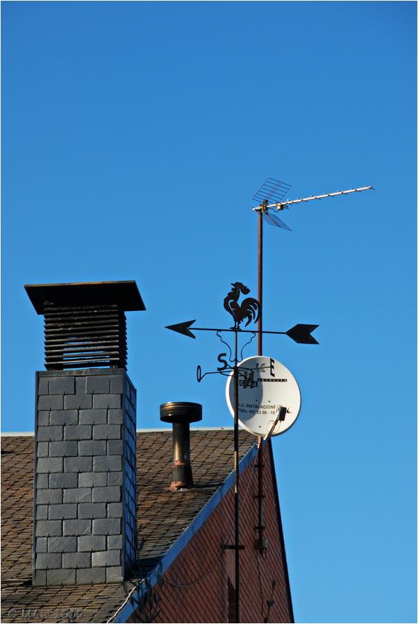 El gallo en el tejado