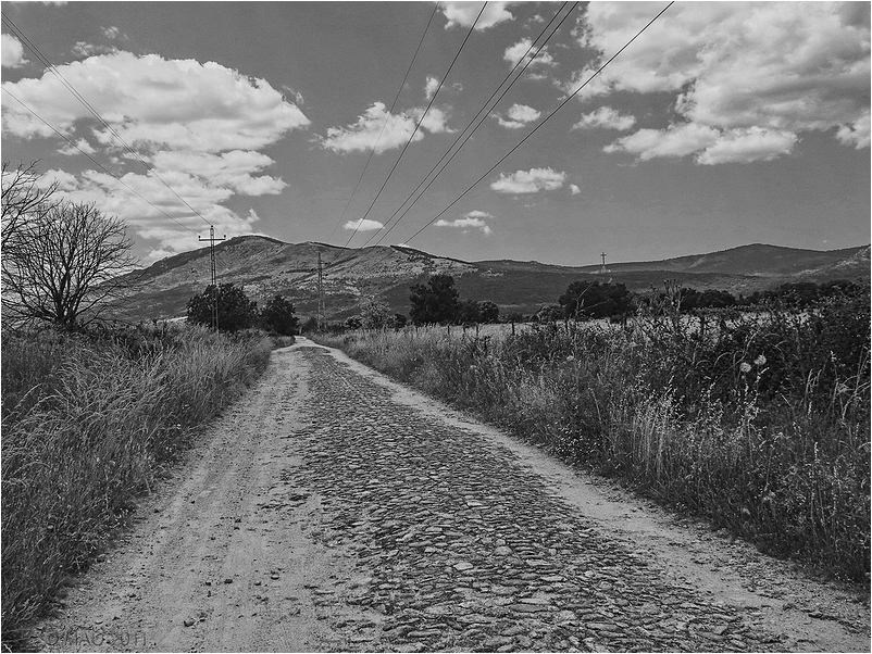 Camino empedrado