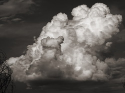 Una simple nube