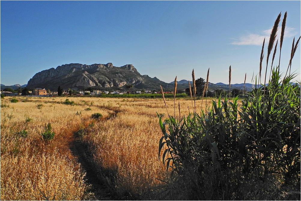 Sierra La Segaria