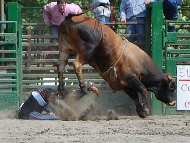 Myrtle Creek Rodeo