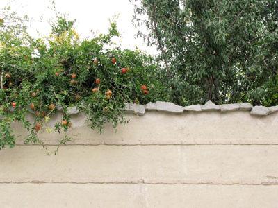 بر لب دیوار