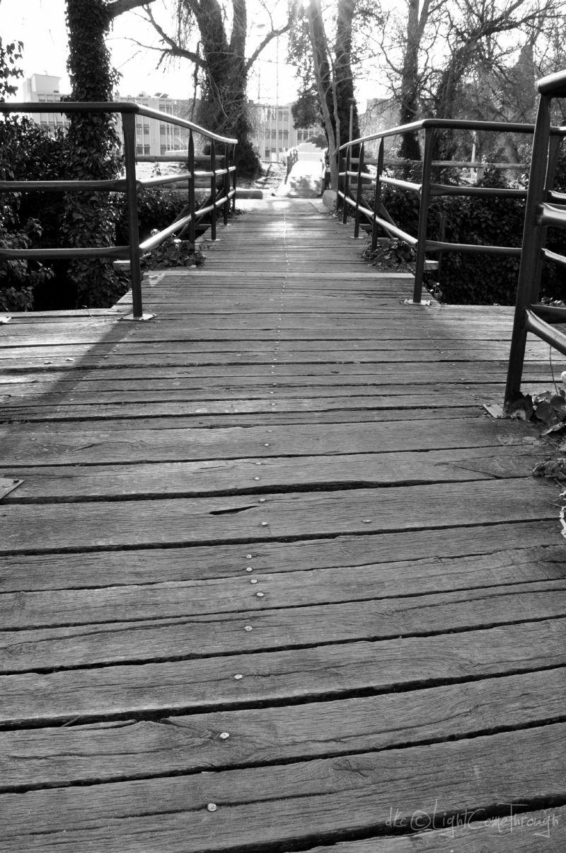 a wooden bridge in monochrome...