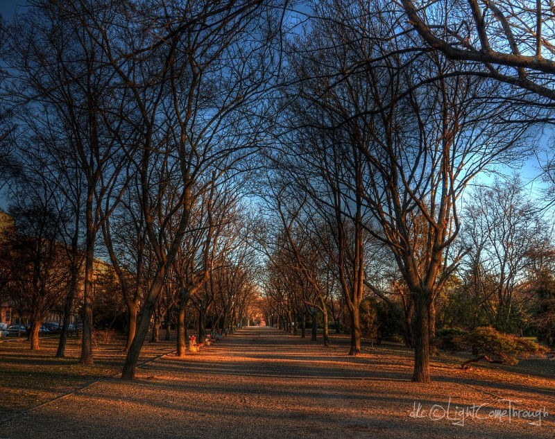 a park close to Buda Castle during sunset