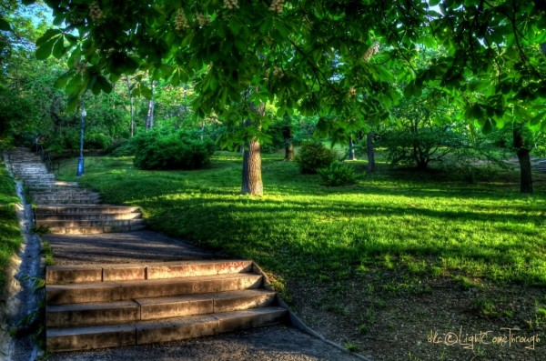a great green place under the Gellert hill...