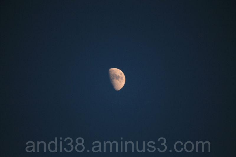 Moon at Evening